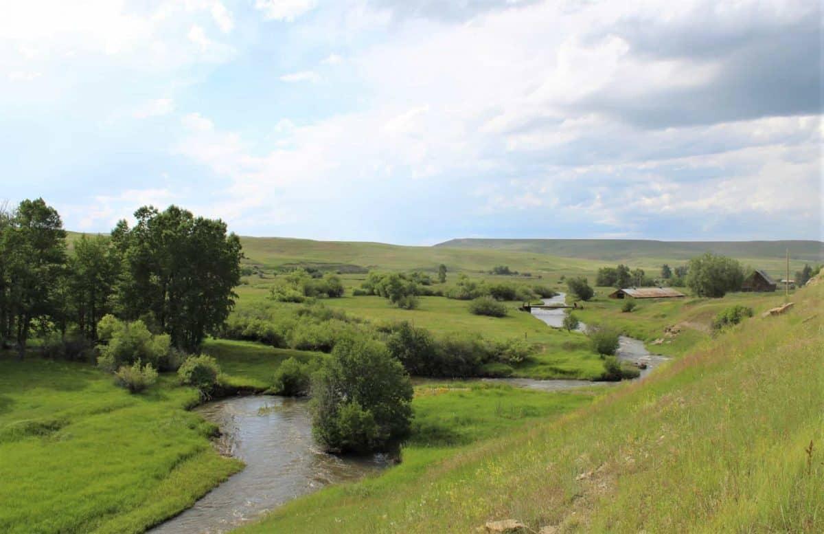 Mange norske slo seg ned i dalen ved Volney Creek.